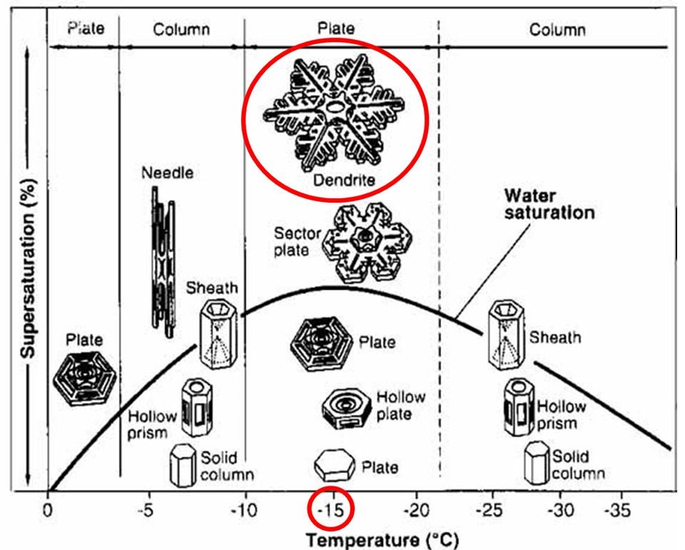 氷晶の温度依存性